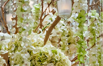 Candles and Hanging Green Flowers | Legendary Events
