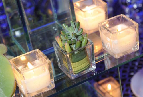 Small Succulent in a Glass with Candles | Legendary Events